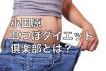 小田原の耳つぼダイエット倶楽部はスリムと健康をサポートします