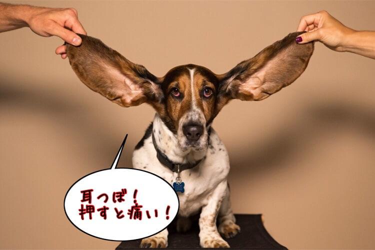 耳つぼを押すと痛い場合の対応策
