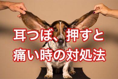 耳つぼ、押すと痛い時の対応策