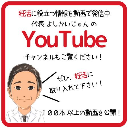 動画へのリンク