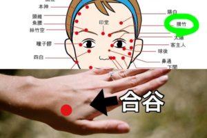 片頭痛のツボ、攅竹と合谷の位置