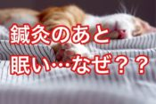 鍼灸の後に眠くなるのはなぜ?よくある質問に鍼灸師が答えたよ